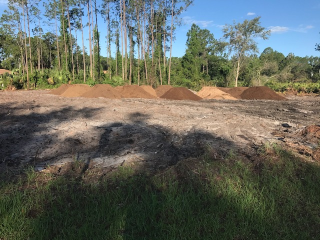 Bobcat Service and Tree Service in Palm Coast